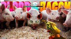 Blood and Bacon (2016) (RePack от Pioneer) PC