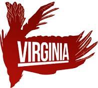 Virginia (2016/Лицензия) PC