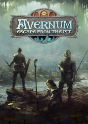 Avernum: Escape From the Pit (2012) (Steam-Rip от Let'sPlay) PC