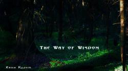 The Way of Wisdom (2016/Лицензия) PC