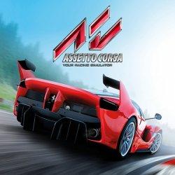 Assetto Corsa (2014) (RePack от xatab) PC